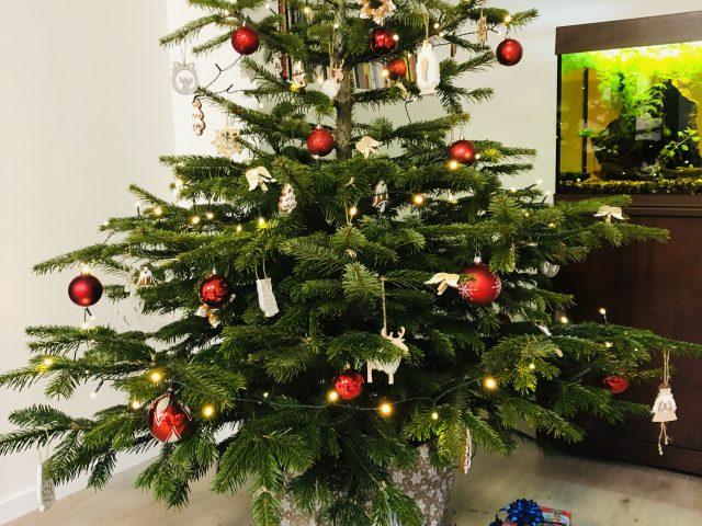 Vánoční besídka MŠ Vrbová Lhota